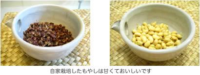 大豆 もやし の 作り方